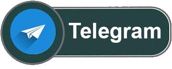 Contactar por Telegram con Portalvasco