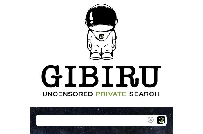 Buscadores alternativos por privacidad o seguridad